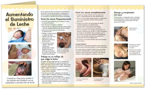 Increasing Milk Supply - Spanish