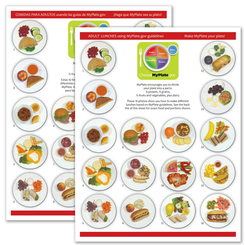 MyPlate Photo Food Pads - Adult Lunch