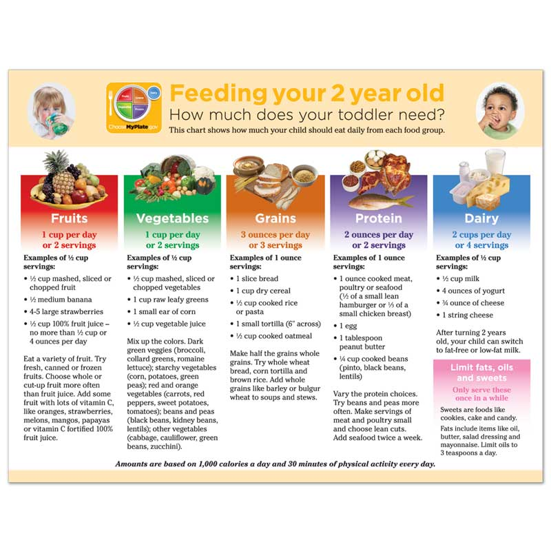 Feeding Your 2 Year Old