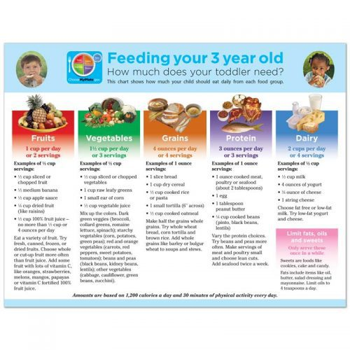 Feeding Your 3 Year Old