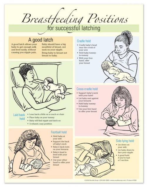 Breastfeeding Positions - English