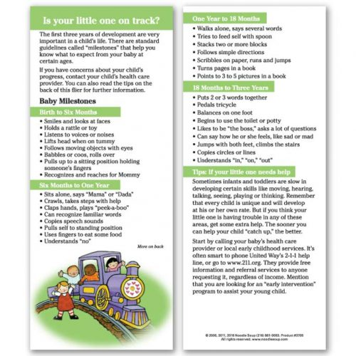 Is Your little one on track - English