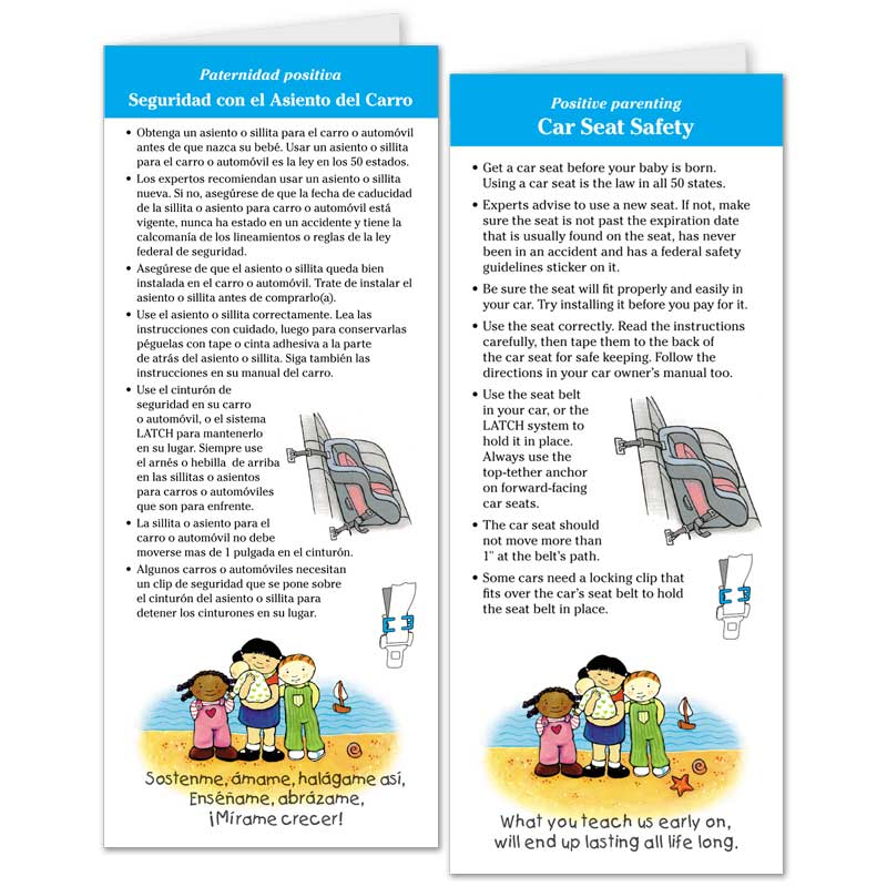 Care Seat Safety flier