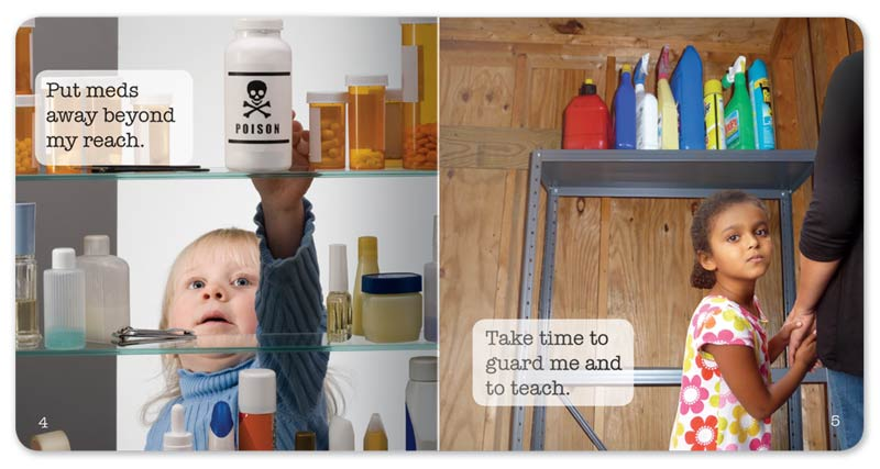 Safety around the Home Little Book