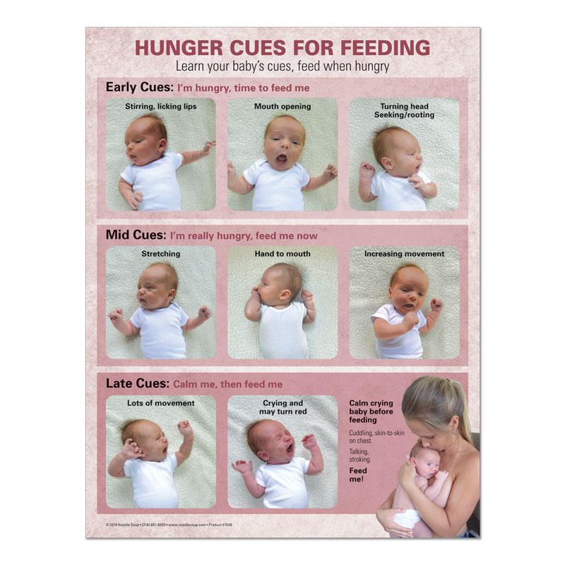 Breastfeeding Hunger Cues Tear Pad - Kenny English