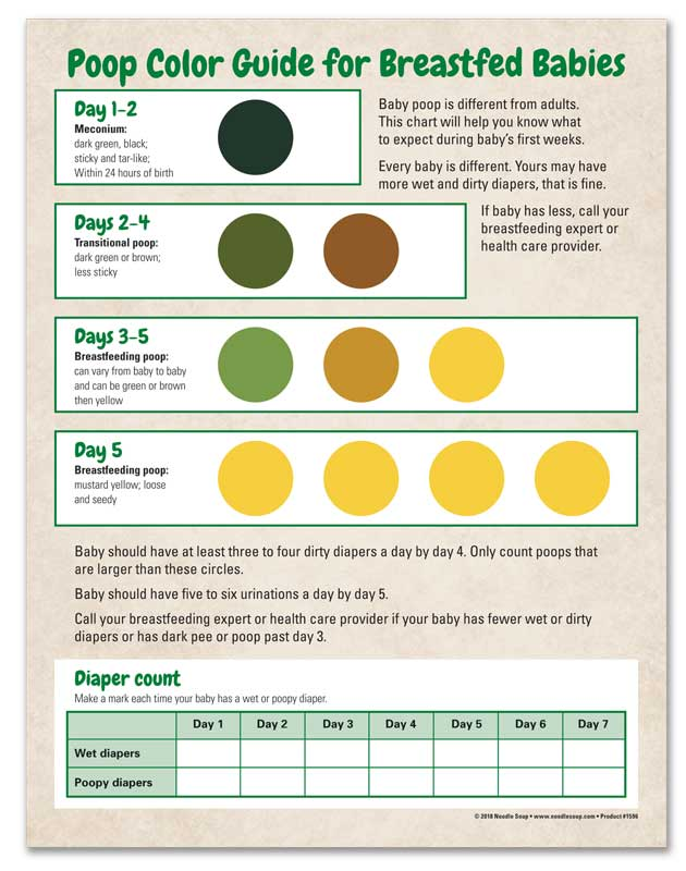 Poop Color Guide - English