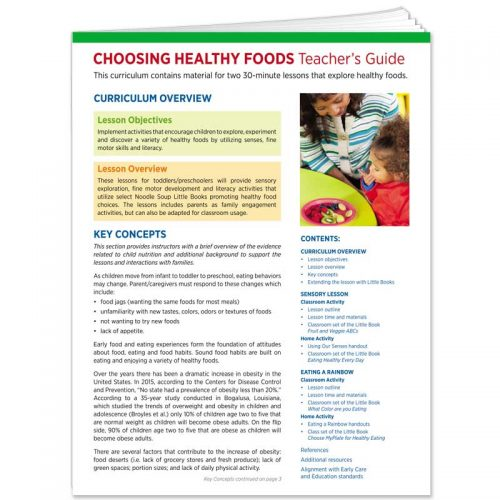Choosing Healthy Food Curriculum