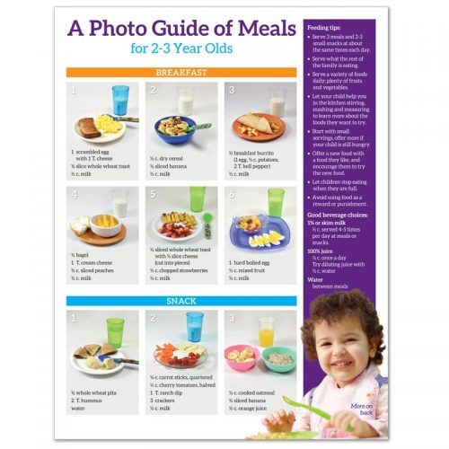 A Photo Guide of Meals for 2-3 Year Olds