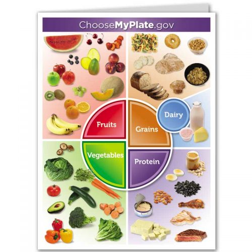 MyPlate pocket folder - front