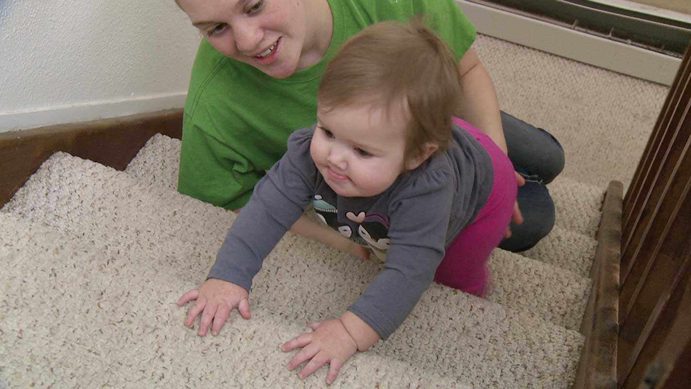 Play and Milestones DVD 7-12 months
