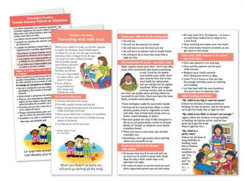 Parenting Well with Food flier pack