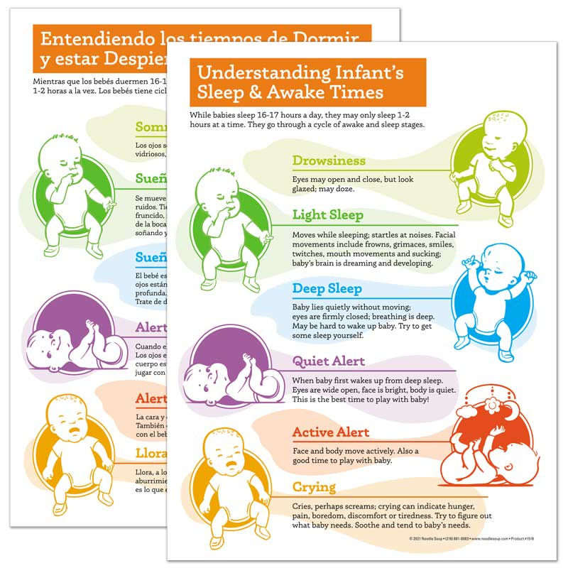 Infant's Stages of Sleep and Awake